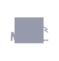hosting unlimited, logo 4